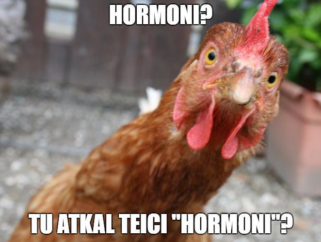 Hormoni? Tu atkal teici 'hormoni'?