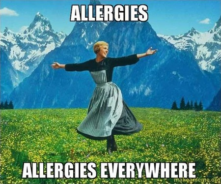 Allergies, allergies everywhere!