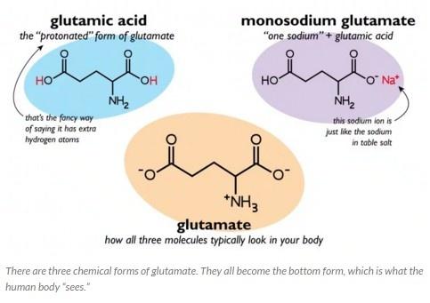 Glutamāta trīs ķīmiskās formas