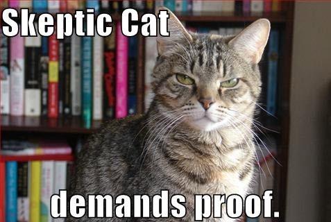 Skeptiskais kaķis pieprasa pierādījumus.